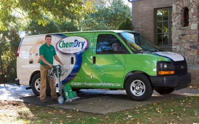 5 Things To Look For In A Carpet Cleaning Company