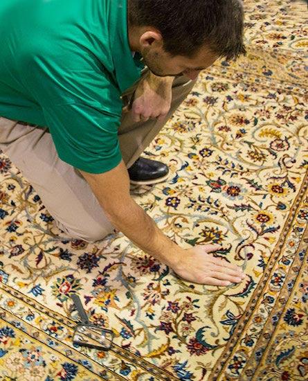 Pristine Chem-Dry Professional Cleanings Oriental Rug