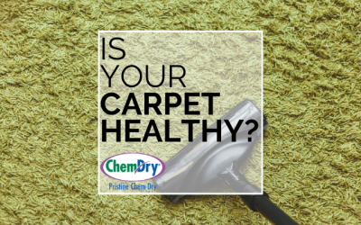 Is Your Carpet Healthy?