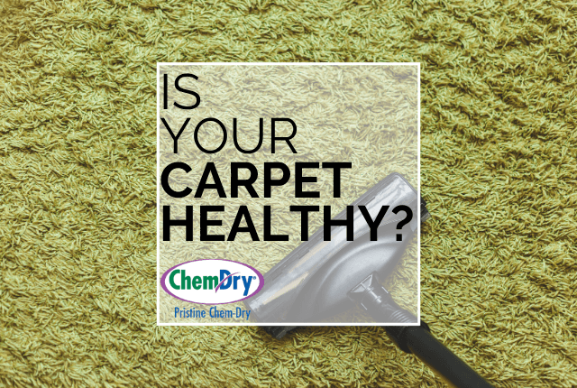 carpet cleaning Pristine Chem-Dry
